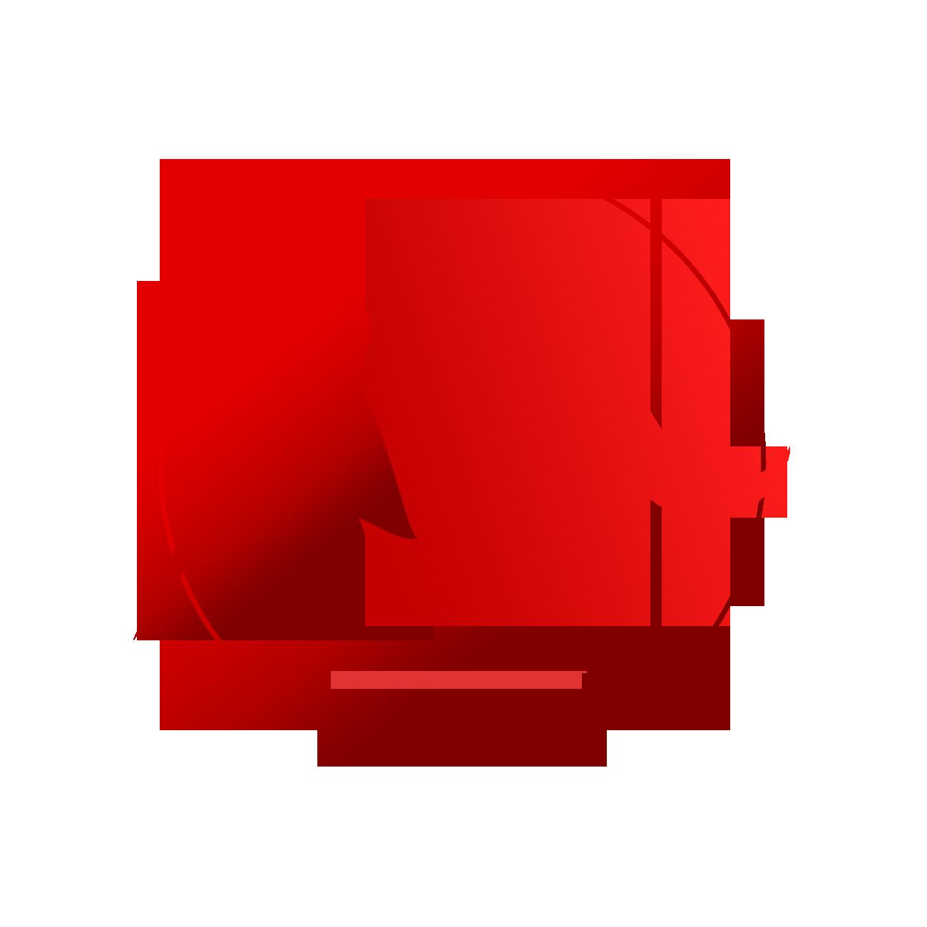 Management S.r.l